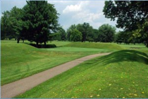 View of octagon and circle configuration at Newark Mound builders Golf and Country Club (J. Markham)
